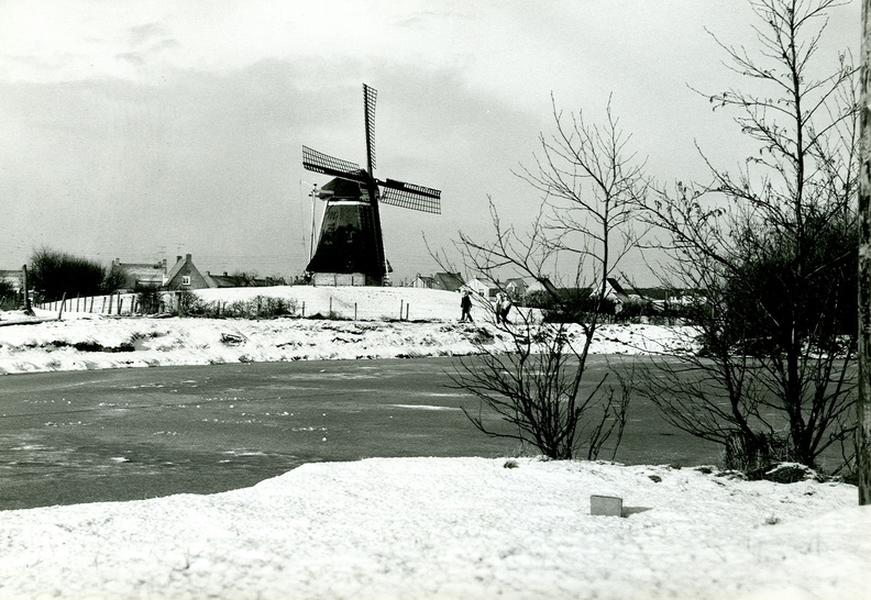 Molen De Phenix in de winter